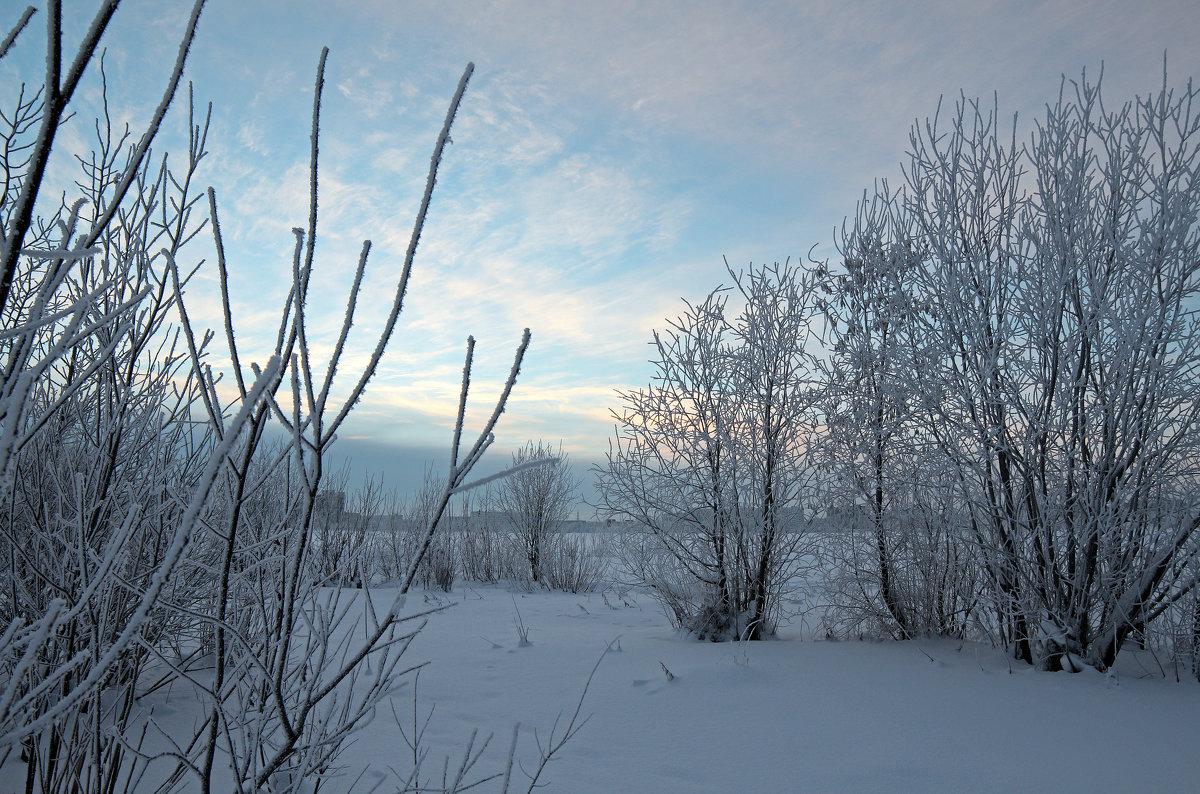 Северодвинск. У зимнего озера - Владимир Шибинский