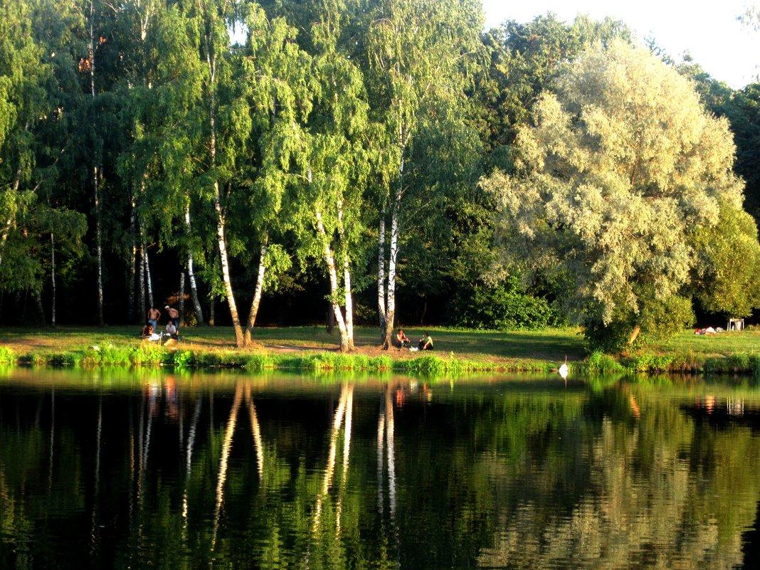 в парке лето - Елена Семигина