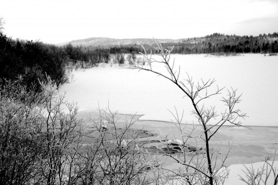 Нижневаенгское озеро.. - вадим измайлов