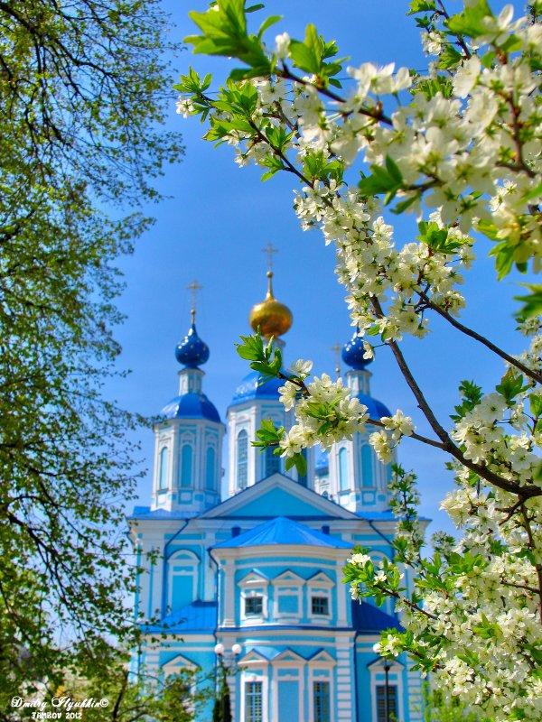 Весна в Тамбове - Дмитрий Илюхин