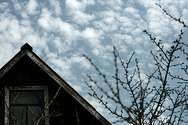 Крыша дома моего - Ирина Татьяничева