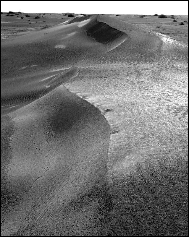 Дюны--Кызыл-Кум - Ахмед Овезмухаммедов