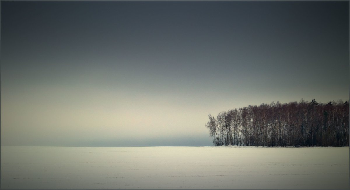 лесной шквал - Сергей Розанов