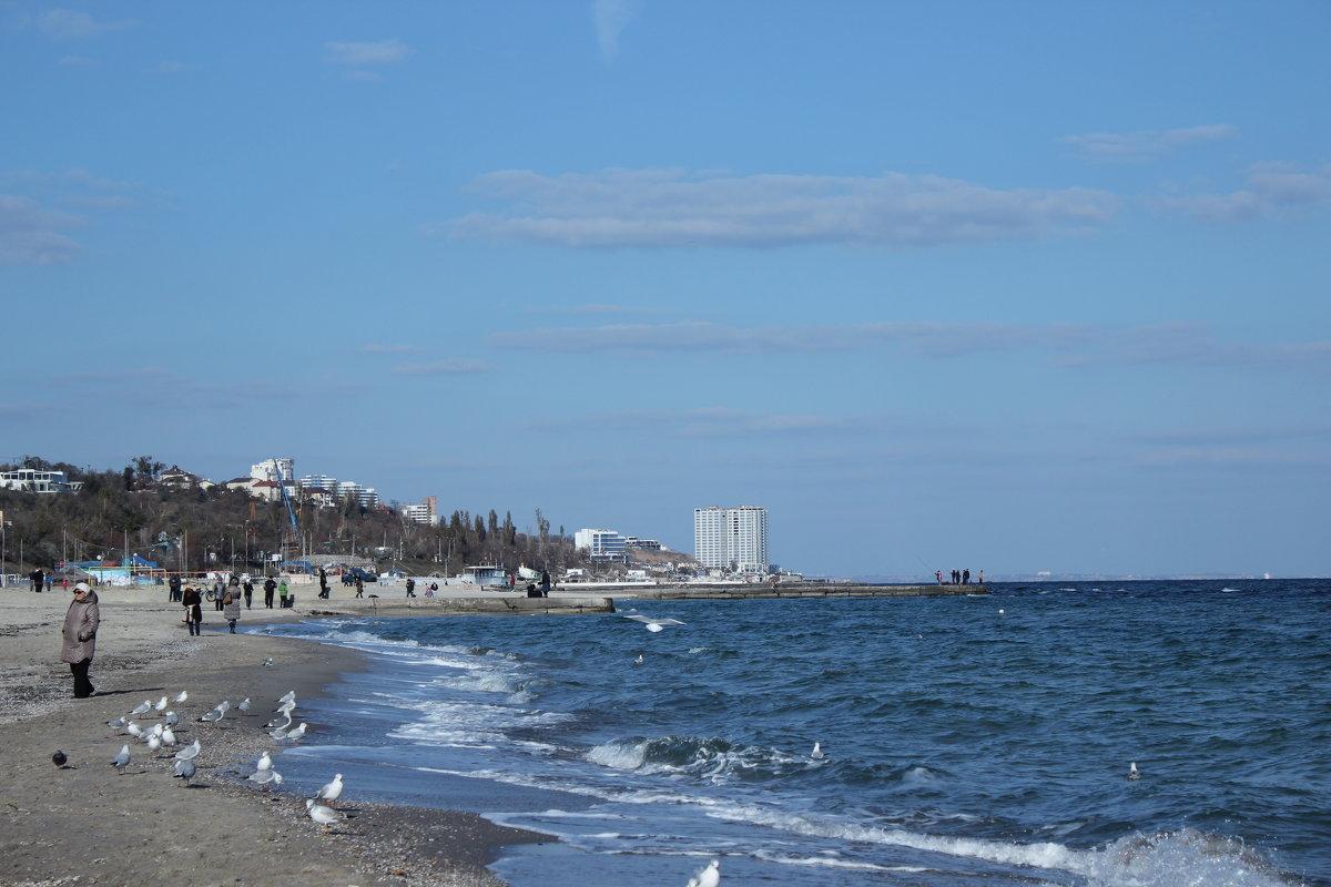 13 фонтана Одесса в ноябре - Татьяна Счастливая