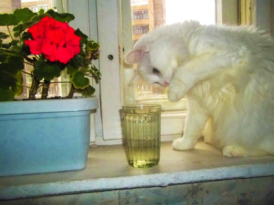 И что там в стакане? - Владимир Ростовский