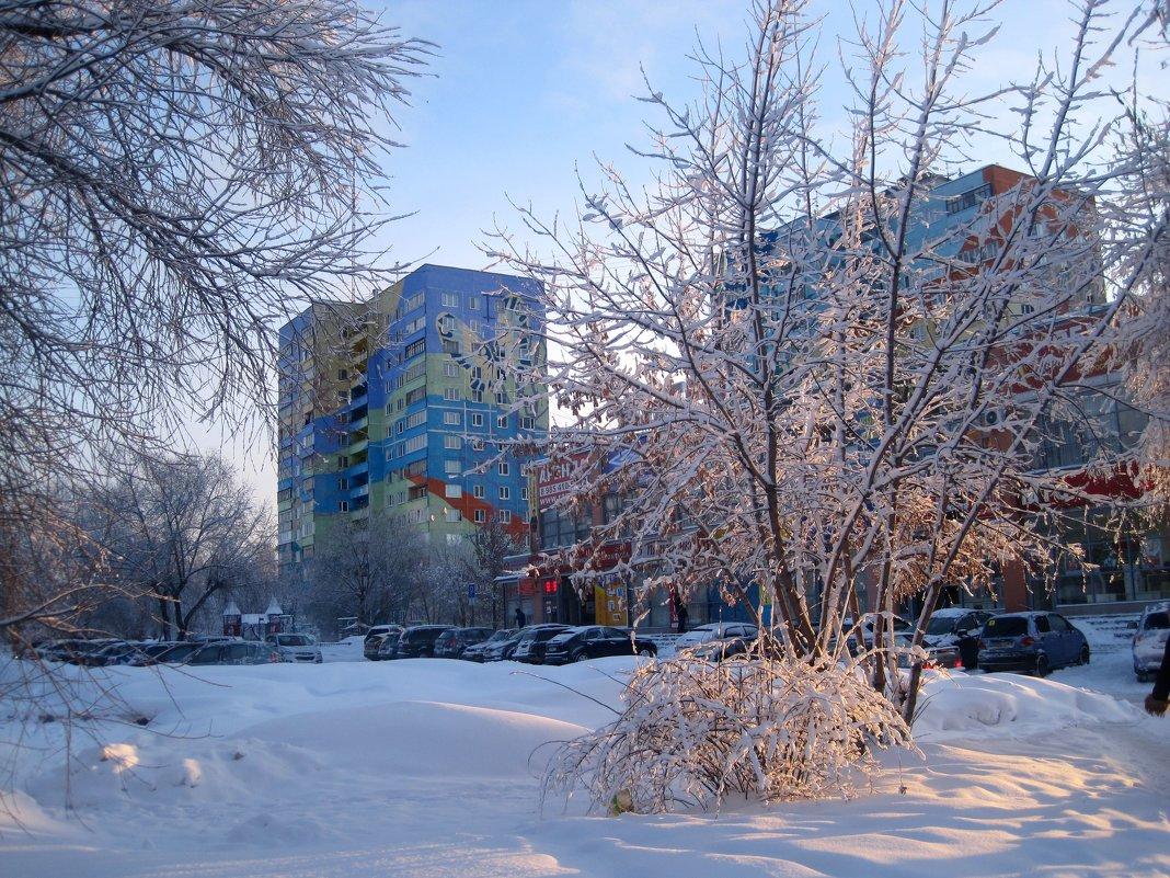 Зима в моем городе - Елена Семигина