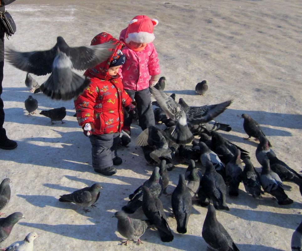 Дети и голуби - счастье ! - Мила Бовкун