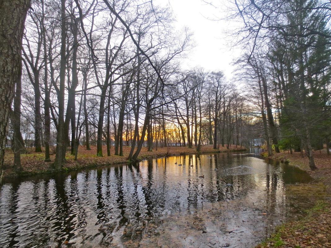 осенняя река - Елена