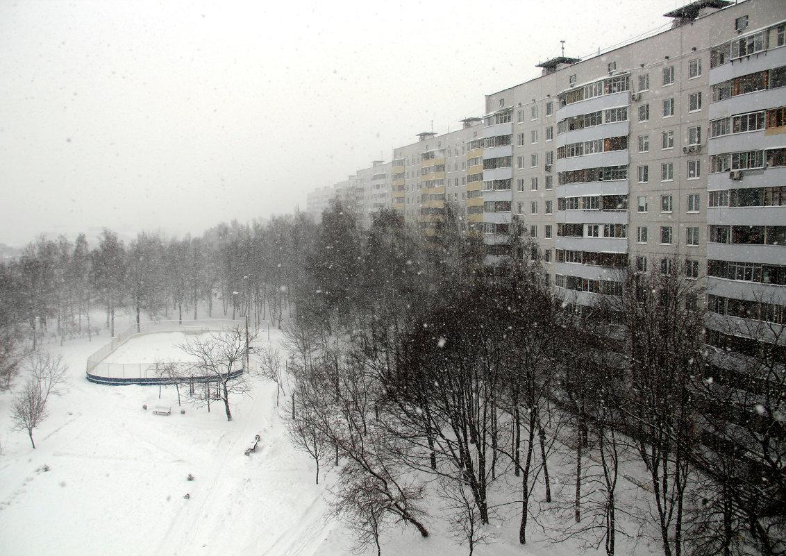Cнегопад - Лариса Корж