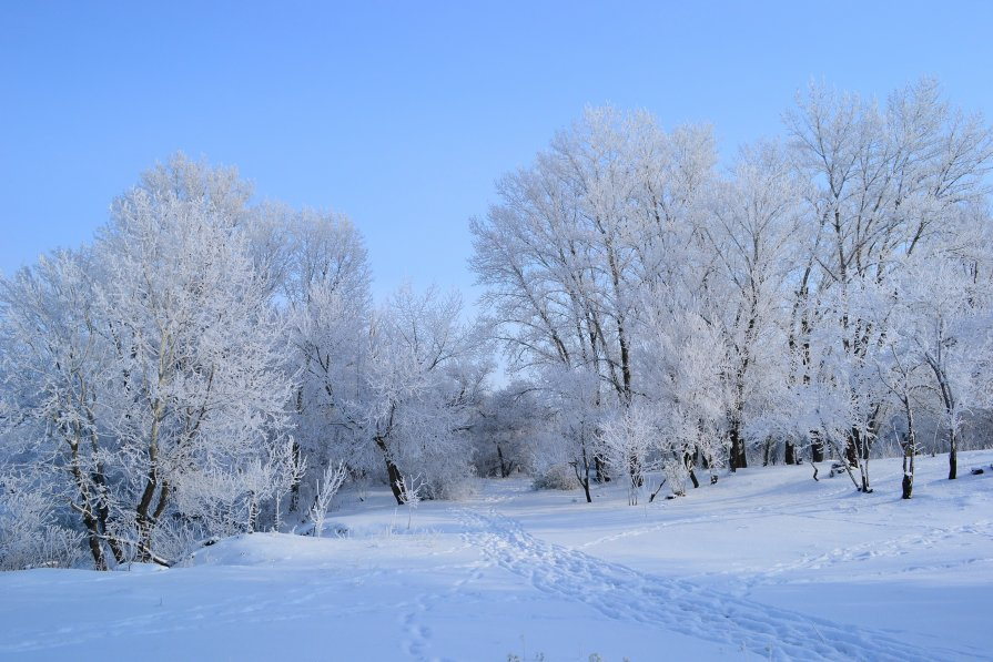 зима - Александр Лонский