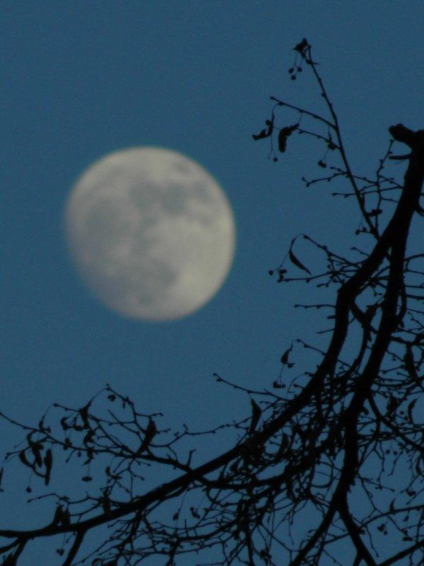 Лунность - Lina Liber