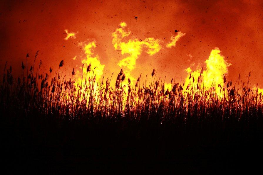 Вблизи огня - Alex Romanov