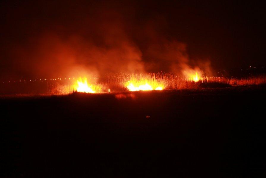 Пожар Анапские плавни №1 - Alex Romanov