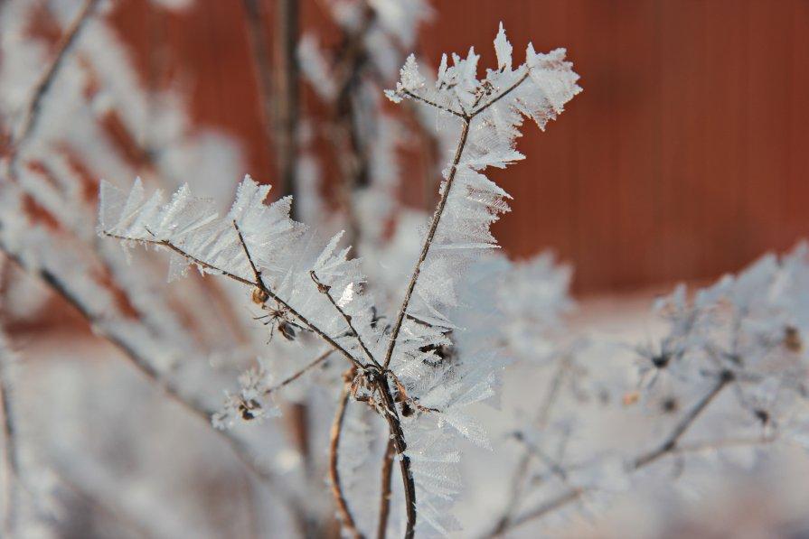 Холодно-уютно,,, - Ирина Елагина