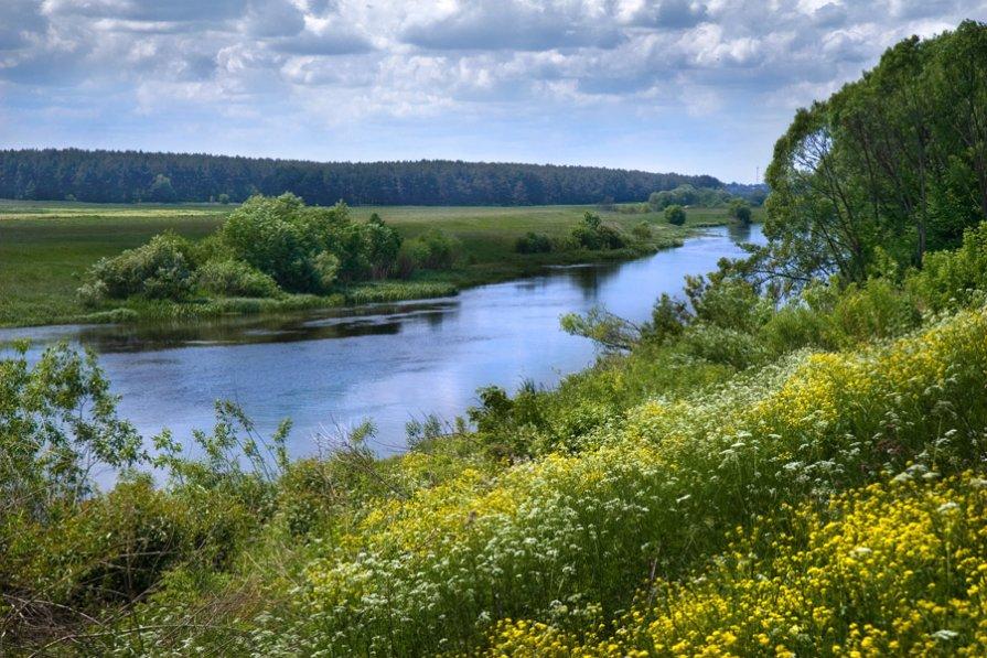 Река Полная - Евгений Боровлёв