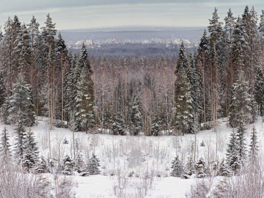 сказочный пейзаж :) - Михаил Киселев