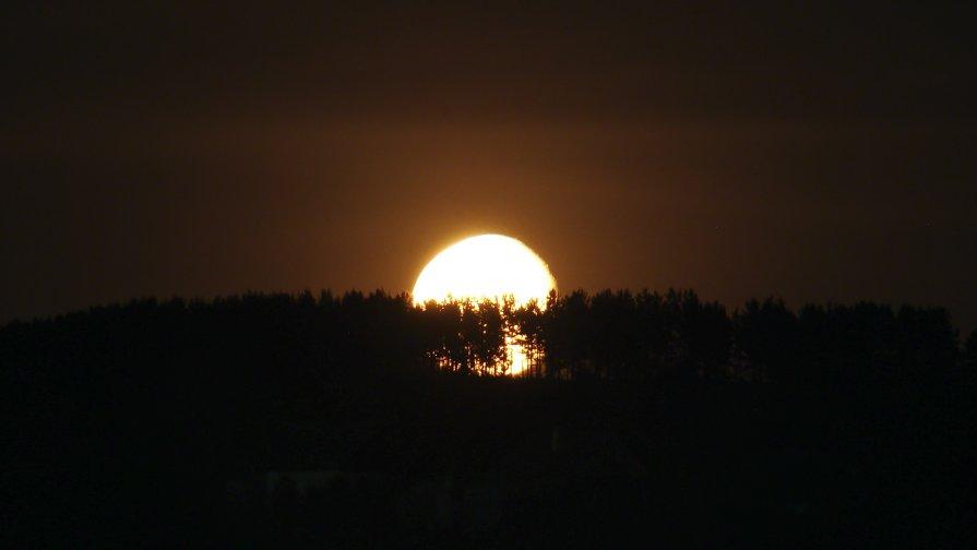луна на выкате - Алексей Хижняк