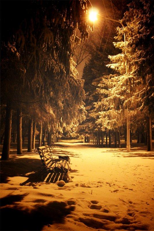 Ночной парк - Павел Карпов