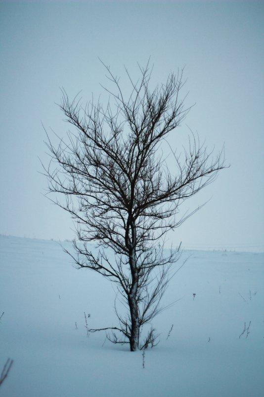 чудеса на дороге - Ксения Горпенко