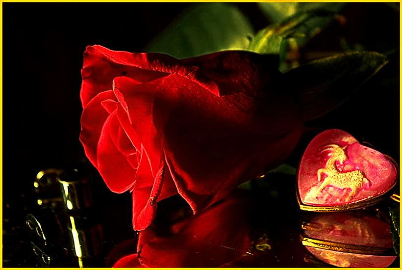 Красная роза на память . - ALISA LISA