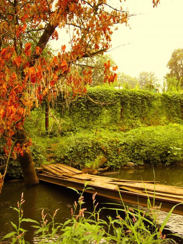Старый мост. - ольга хадыкина