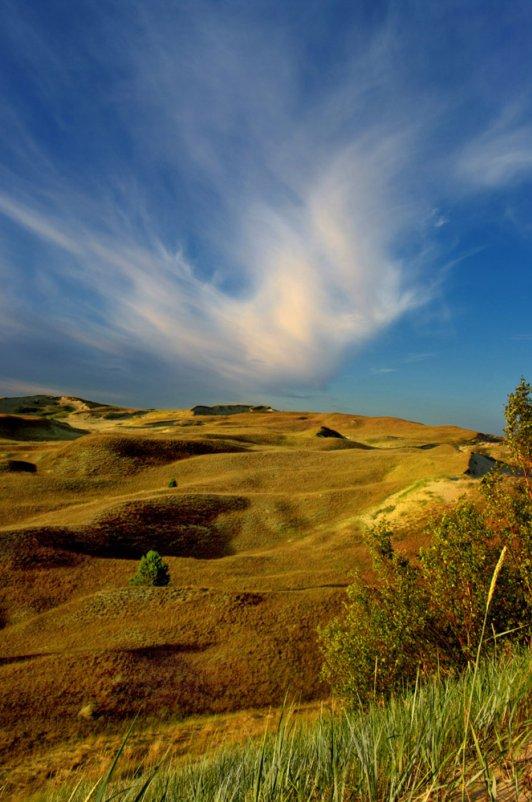 dead dunes - linas būdavas