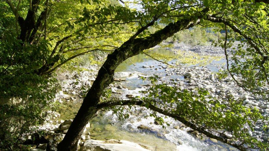 Горная река до разлива - Александр Леонов