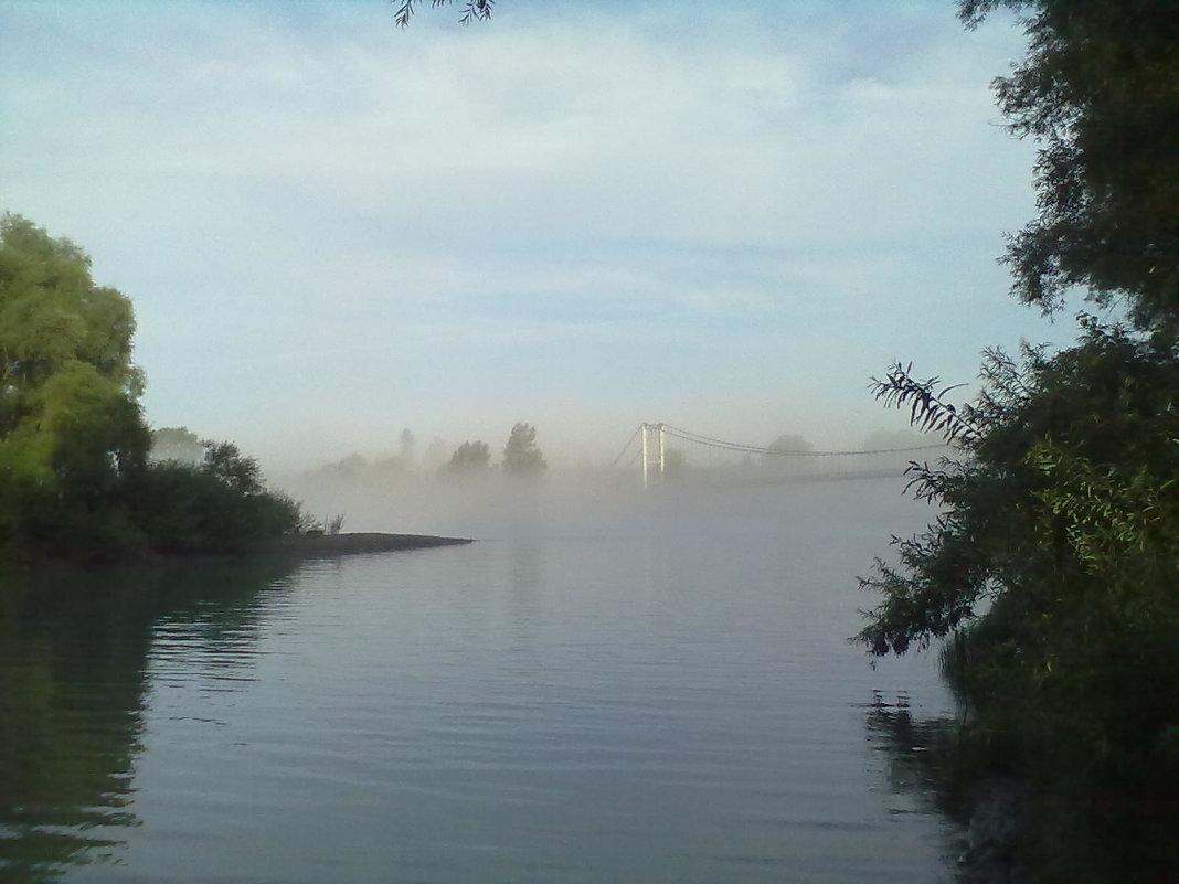 туман, приток Катуни - Алексей Сотников