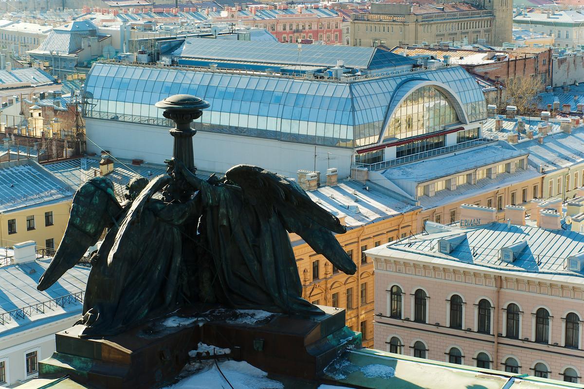 Питер с высоты птичьего полета - Алексей Кудрявцев