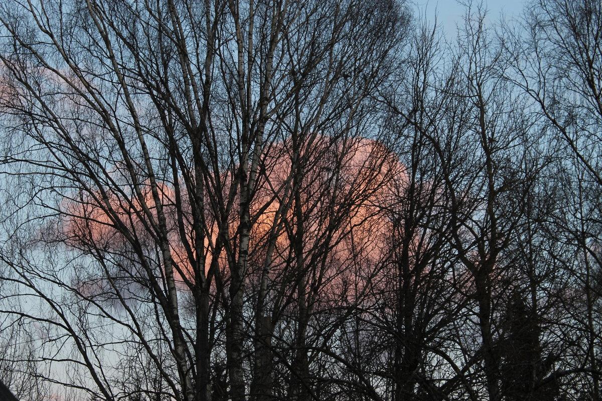 Розовые облака - Наталья Березко