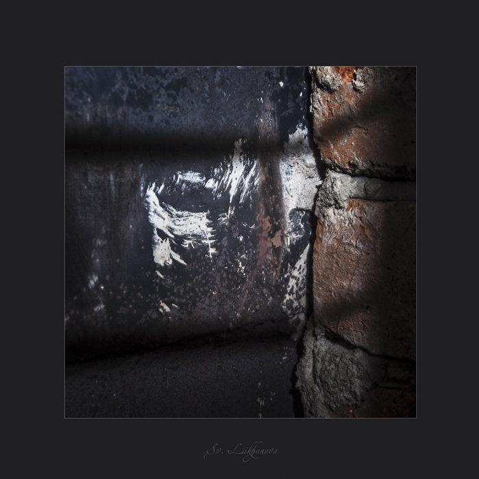 Случайный портрет  Че Гевары...   ))) - Светлана Лиханова