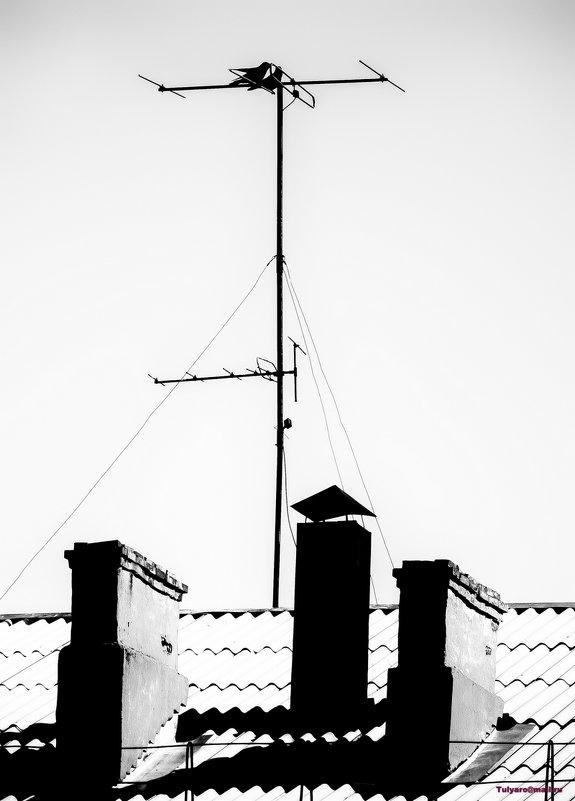 Проводники сигнала - Роман