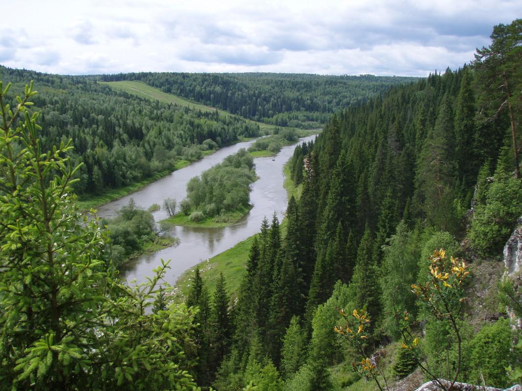 Река Койва - Сергей Комков