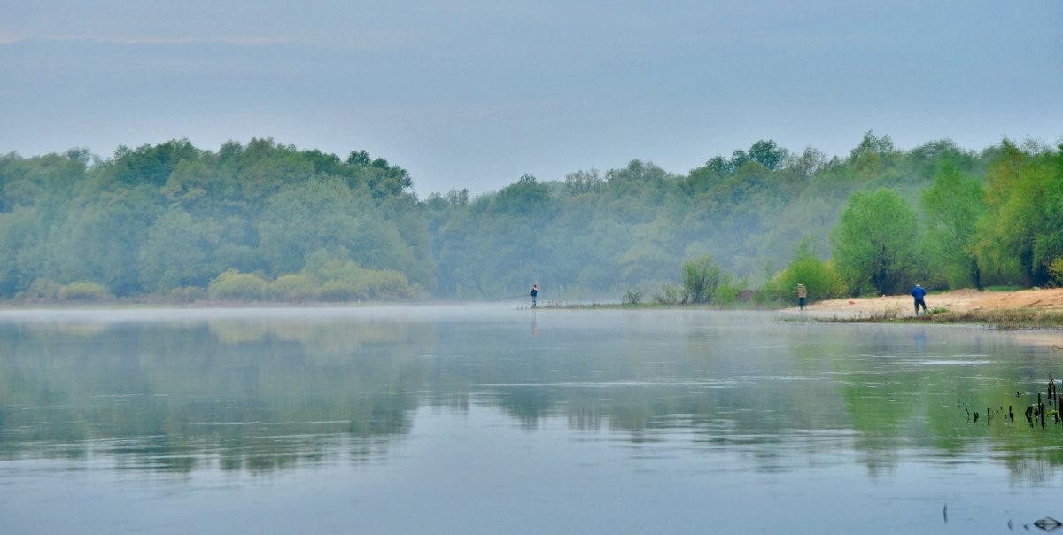 тихий дон утро на рыбалке