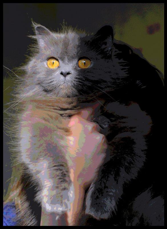 http cats xbubs ru karving-qovundan html