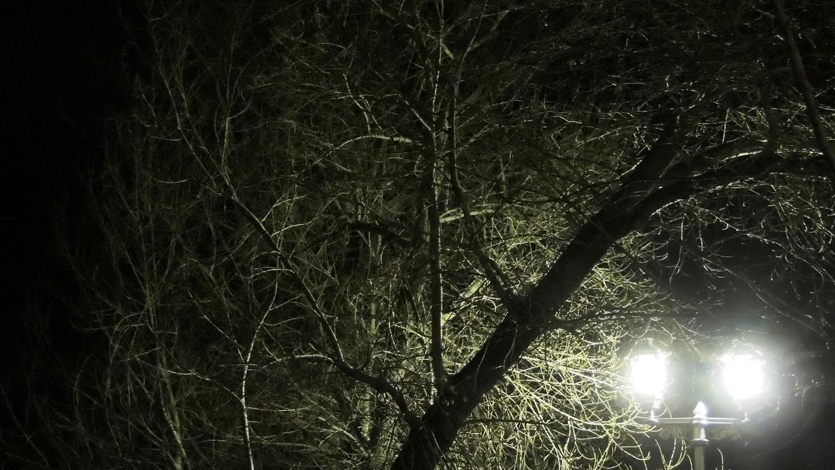 Городской фонарь - Виталий Вильценс