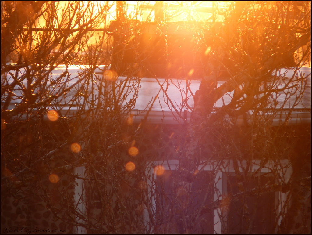Зимний восход - Наташа NorthCity