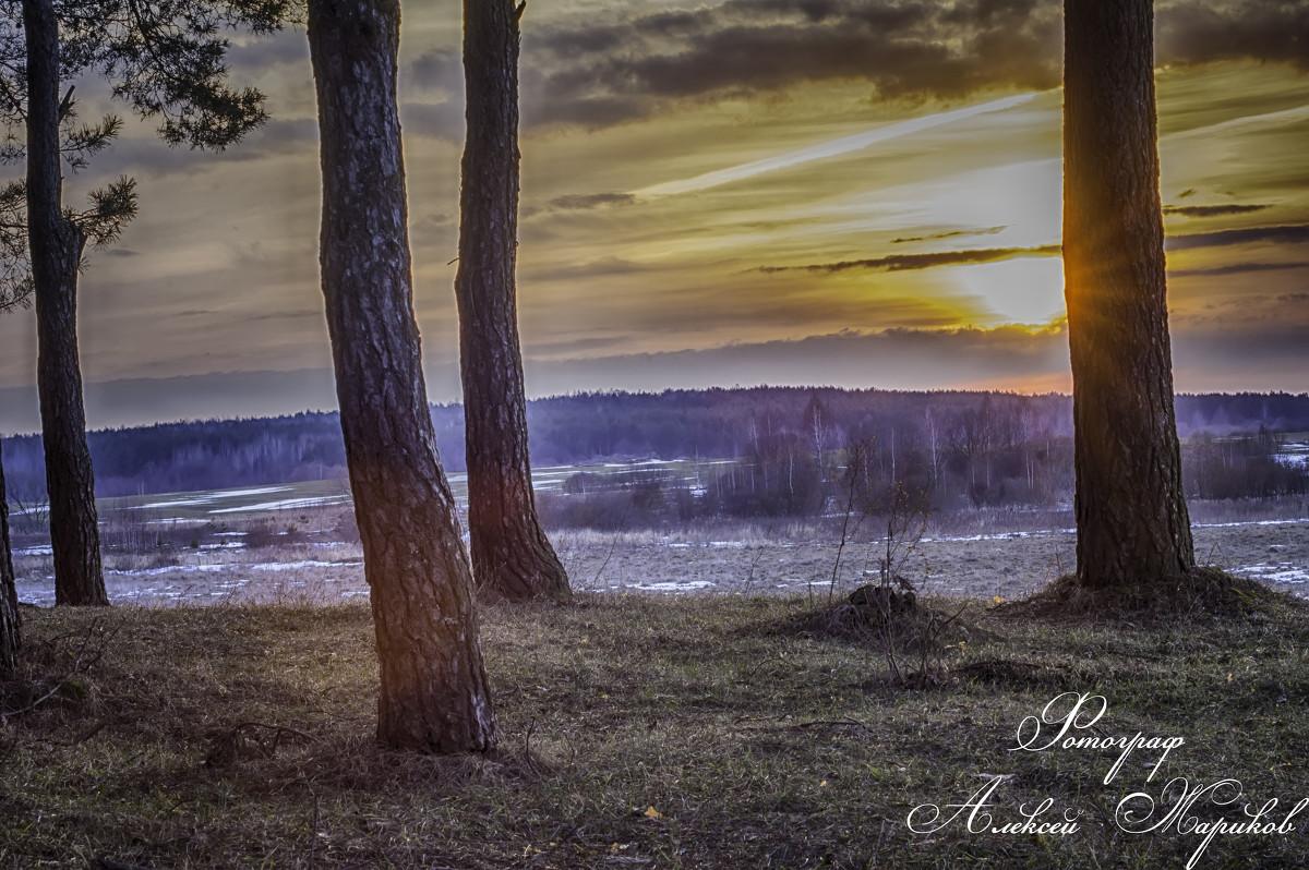 закат в моем городе - Алексей Жариков