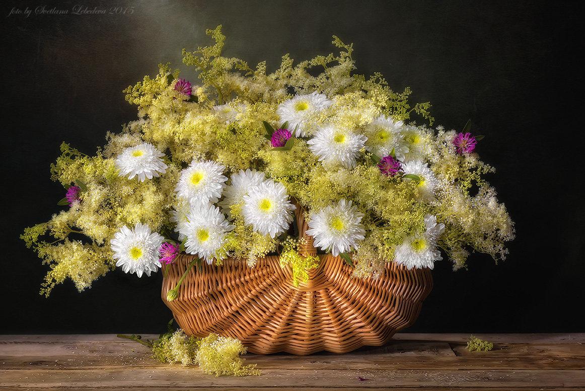 С букетом махровых ромашек и полевыми цветами - Светлана Л.