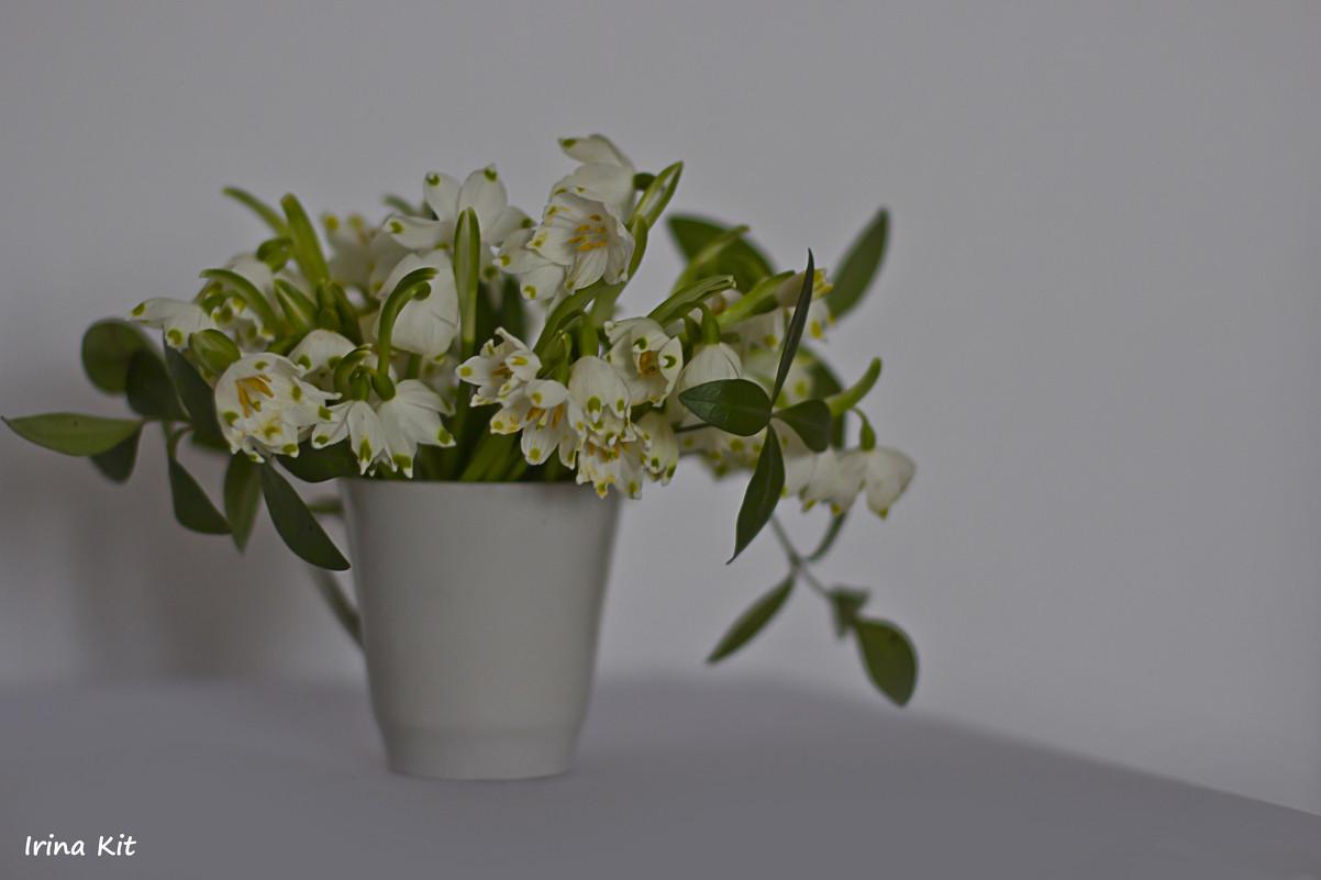 цветы - Ира Лучко