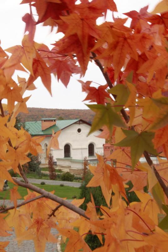 Осень в монастыре - Анна Ипироти