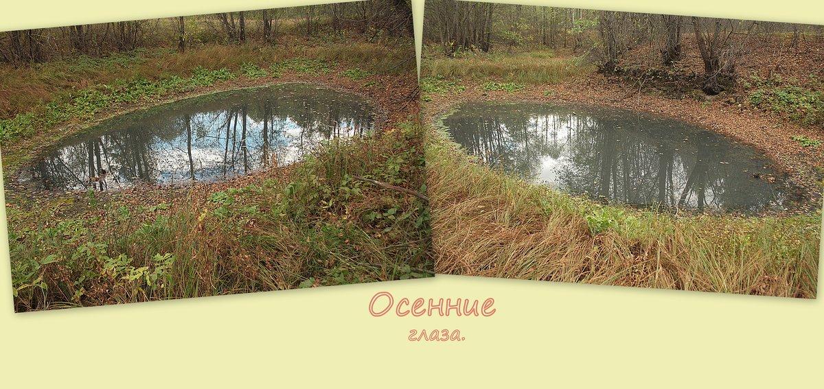 "Коллаж. ""Осенние глаза."" - Николай Масляев"