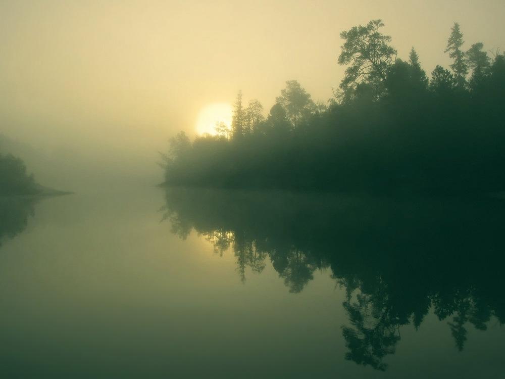 Лёгкой дымкой зелёный туман... - Татьяна .