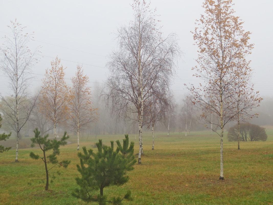 стоял ноябрь уж у двора - Елена