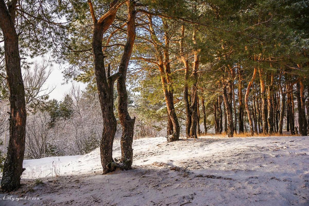 Первый снег. - Александр Тулупов
