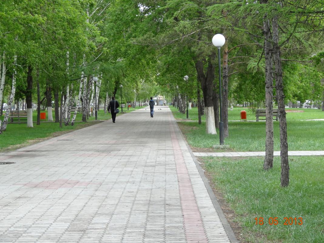 Аллея в парке - Анна Фряуф