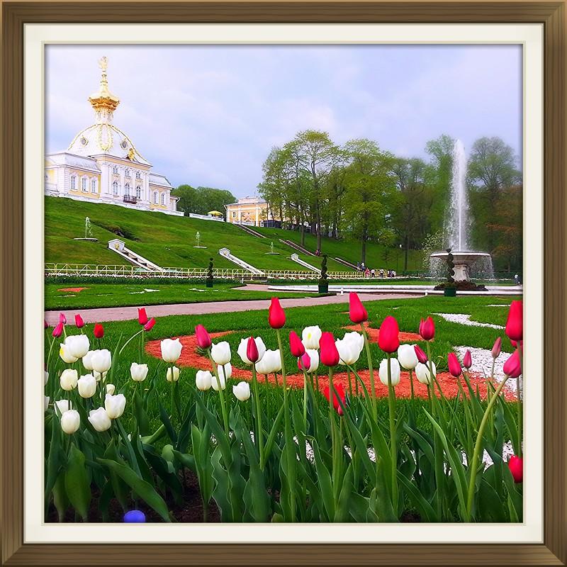 Свежесть - Анастасия Биковская