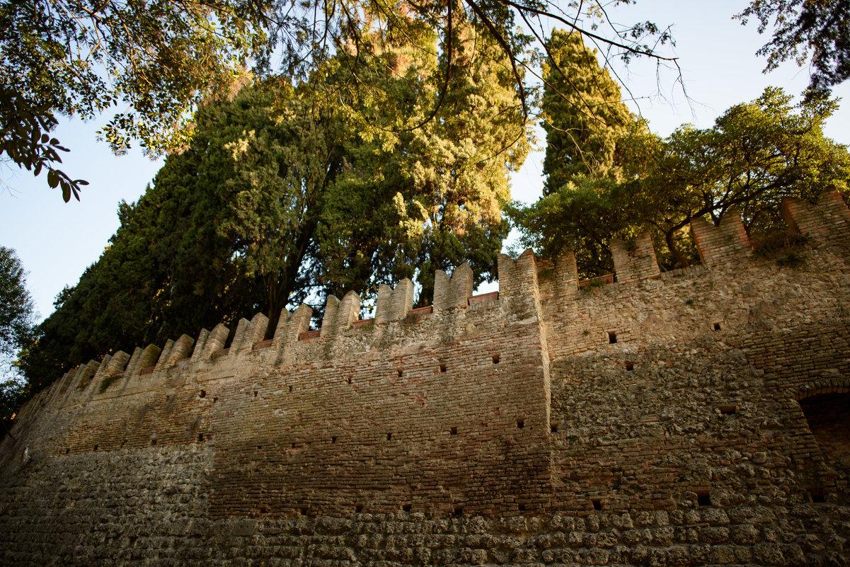 Castello di conegliano foto 29