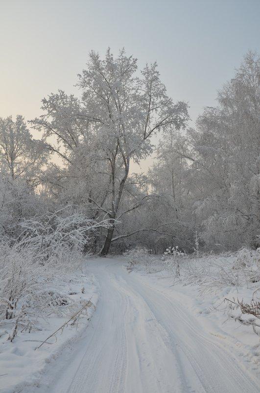 зимушка-зима) - татьяна малышева