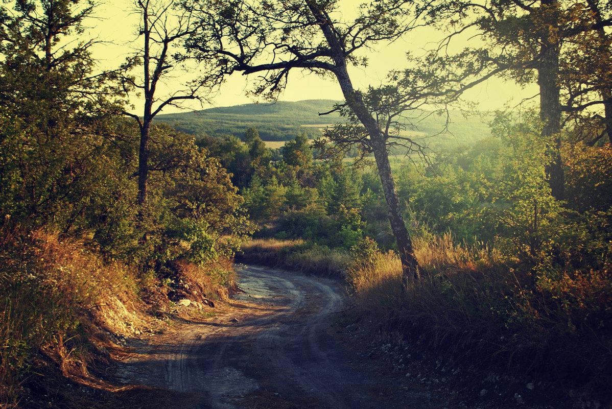 Утро в Вольском районе - Yulia Demina